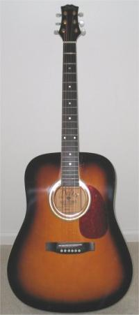 d42 acoustic guitar by delta guitars valuation report by. Black Bedroom Furniture Sets. Home Design Ideas